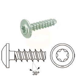 Torx Flange Thread Forming Screws for Thermo Plastics - BZP