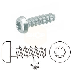 Torx Pan Head Thread Forming Screws for Thermo Plastics BZP - 5.0 x 16mm